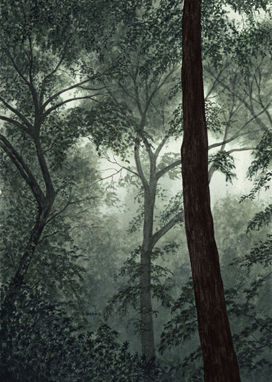 Misty Morning - Giclee